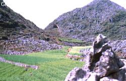 Xiaodaladong
