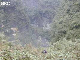Hongzhaozidong