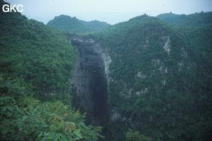 Yanfengdong