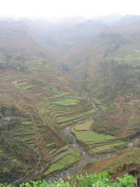 Mawandong