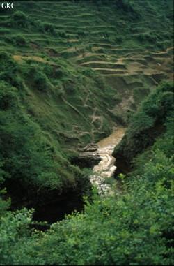 Santangdongqun