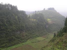 Longwangdong